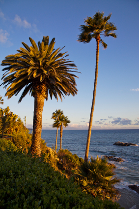 Laguna Beach California Wilderness Park